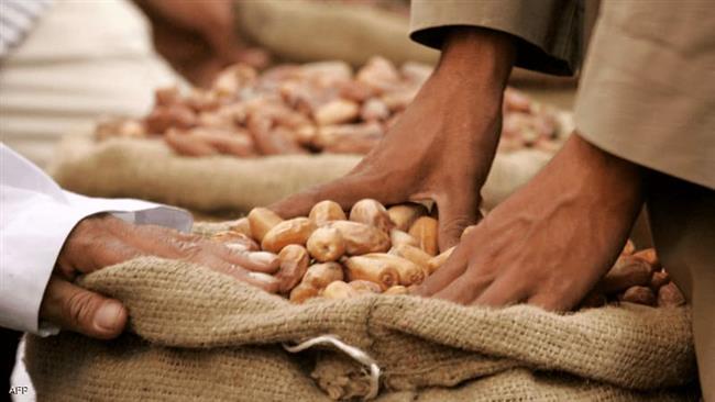 أمجد القاضي : مصر أكبر منتج للتمور في العالم بنسبة 18%