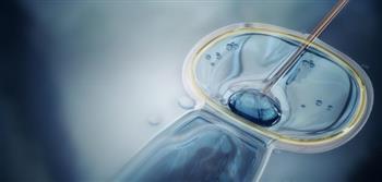 ما حكم إجراء عملية الحقن المجهري؟ .. الإفتاء تجيب