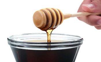 محافظ قنا يشارك فى ورشة عمل حول تطوير صناعة العسل الأسود