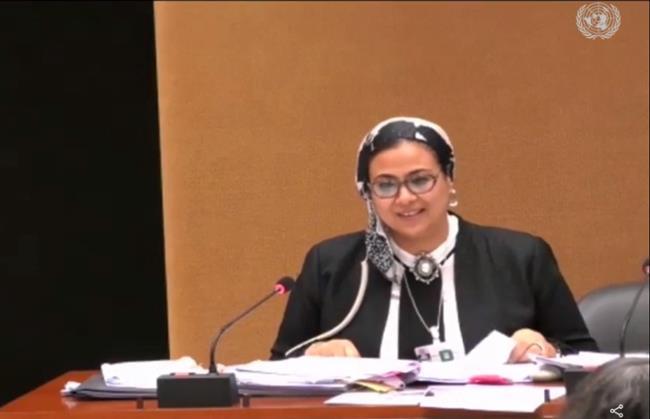 وفد مصر بجنيف: ٢٠ ٪ من القاضيات بهيئة قضايا الدولة وعضوات هيئة النيابة الإدارية