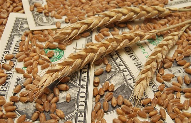 أسعار القمح تسجل أعلى مستوياتها منذ 2008