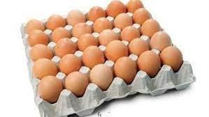 كرتونة البيض في المجمعات الاستهلاكية بـ49 جنيه