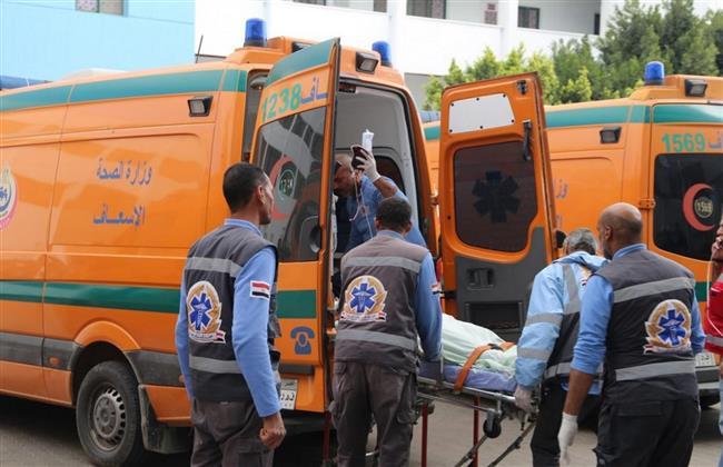 مصرع طالب صدمته سيارة أثناء عبوره الطريق بالدقهلية