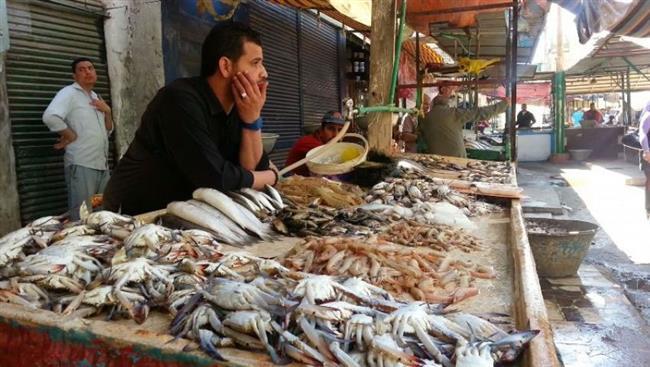 أسعار الأسماك فى سوق العبور
