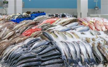 تراجع أسعار الأسماك