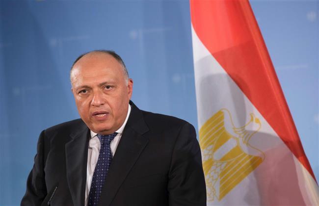 وزير الخارجية يناقش أزمة سد النهضة مع مستشار الأمن القومى الألمانى