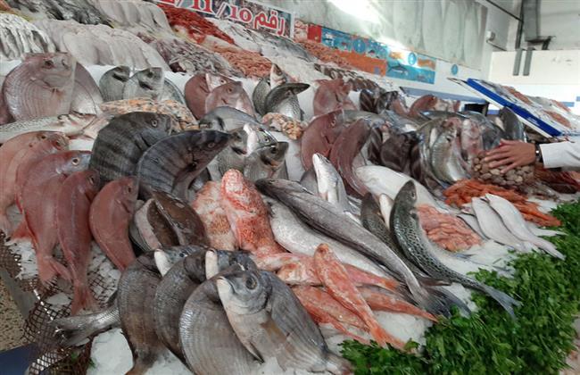 الركود يسيطر على أسواق الأسماك بعد انتهاء عيد الأضحى