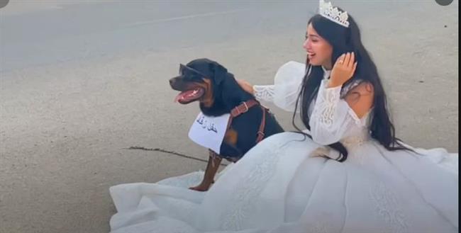 البلوجر هبة مبروك تكشف حقيقة زواجها من «كلب»