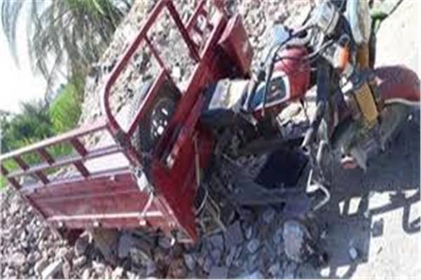 مصرع 3 وإصابة 4 آخرين في تصادم تروسيكل بشجرة فى المنيا