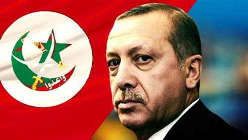 لماذا يدعم الإخوان أردوغان؟
